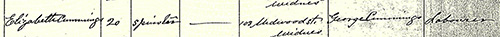 Mary Boyle Marriage Certificate